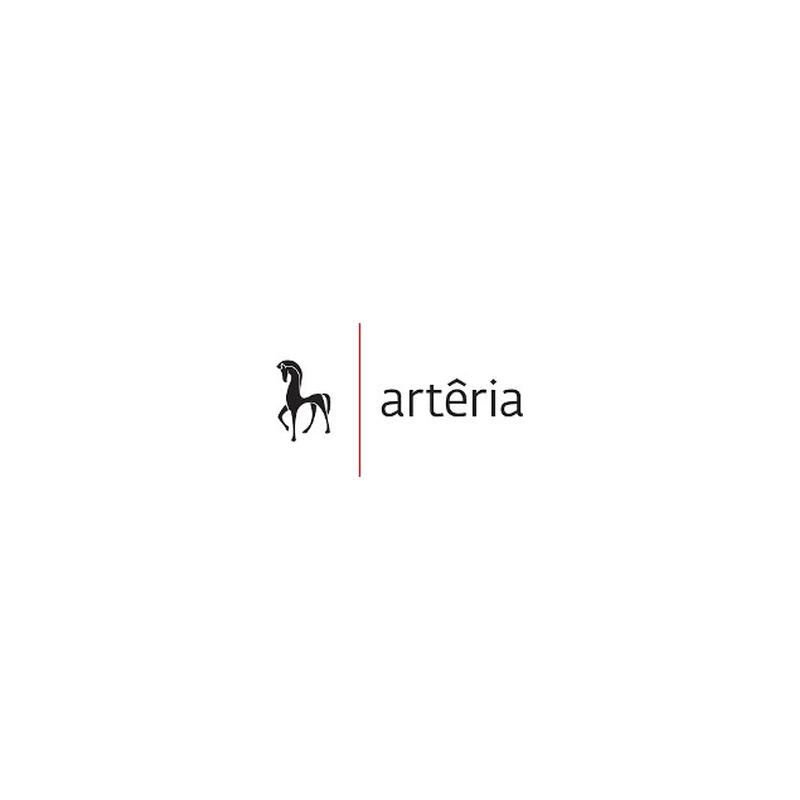 Galerie d'art ARTÊRIA